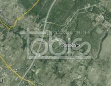 TOBIS_005153
